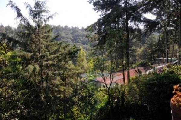 Foto de edificio en venta en  , bosques de tarango, álvaro obregón, distrito federal, 2643962 No. 15