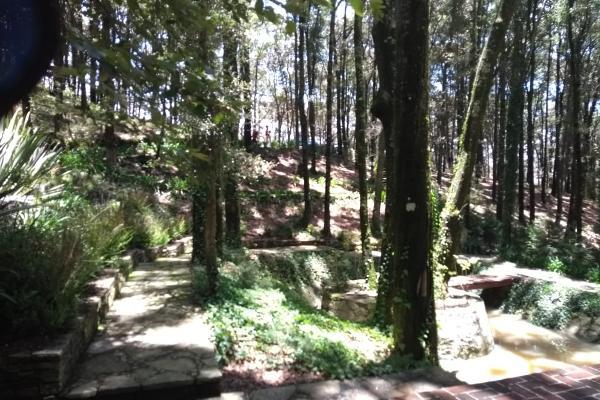 Foto de terreno habitacional en venta en bosques del zumate , el espejo, omitlán de juárez, hidalgo, 6153345 No. 03