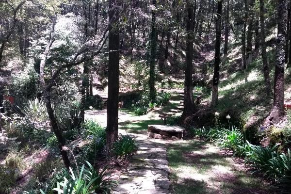 Foto de terreno habitacional en venta en bosques del zumate , el espejo, omitlán de juárez, hidalgo, 6153345 No. 05