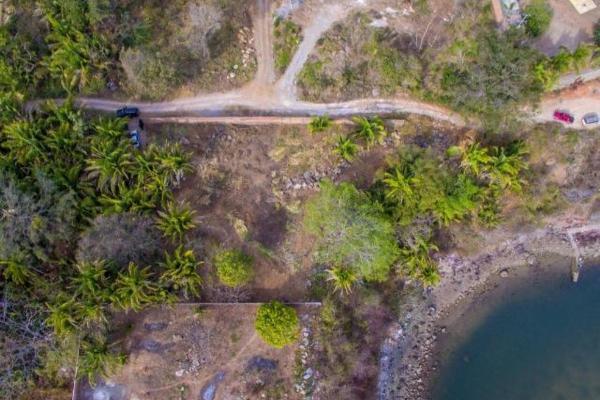 Foto de terreno habitacional en venta en bougainvilleas , platanitos, tepic, nayarit, 5629915 No. 01