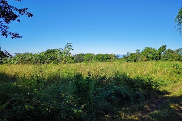 Foto de terreno habitacional en venta en brecha 1, chiapa, cuauhtémoc, colima, 5958565 No. 09