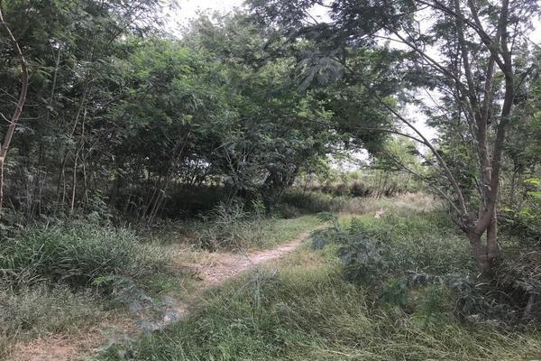 Foto de terreno habitacional en venta en brecha la venada , la luz, matamoros, tamaulipas, 5302387 No. 04