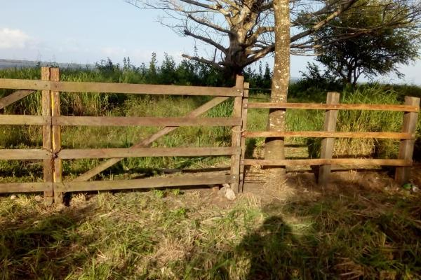 Foto de terreno comercial en venta en brecha las huastecas ctv3086 , encinal y mesa, ozuluama de mascareñas, veracruz de ignacio de la llave, 5949928 No. 01