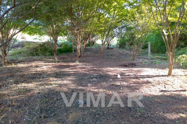 Foto de terreno habitacional en venta en  , brisas de zicatela, santa maría colotepec, oaxaca, 0 No. 04