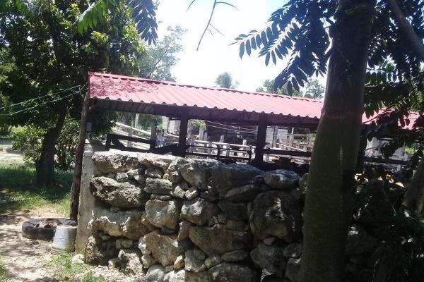 Foto de casa en venta en  , buctzotz, buctzotz, yucatán, 7975238 No. 09