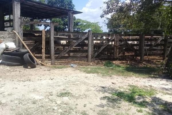 Foto de casa en venta en  , buctzotz, buctzotz, yucatán, 7975238 No. 16