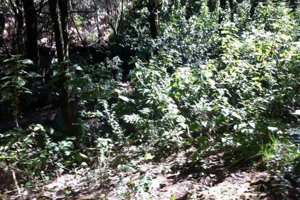 Foto de terreno comercial en venta en  , buenavista, zinacantepec, méxico, 2631997 No. 01