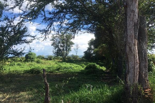 Foto de terreno habitacional en venta en bugambilias , paso de la comunidad, ocotlán, jalisco, 14031609 No. 02