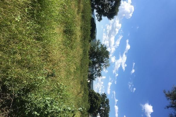 Foto de terreno habitacional en venta en bugambilias , paso de la comunidad, ocotlán, jalisco, 14031609 No. 03