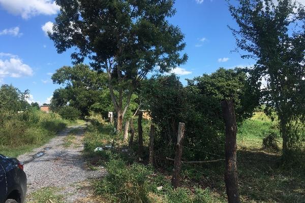 Foto de terreno habitacional en venta en bugambilias , paso de la comunidad, ocotlán, jalisco, 14031609 No. 04