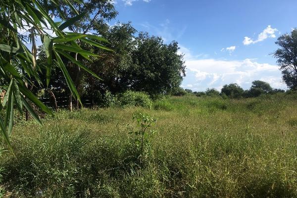 Foto de terreno habitacional en venta en bugambilias , paso de la comunidad, ocotlán, jalisco, 14031609 No. 05