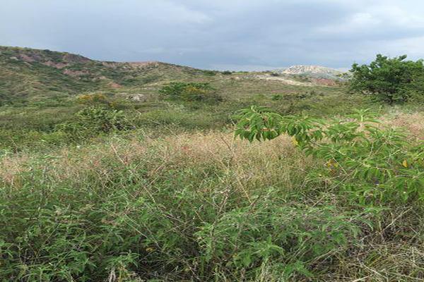 Foto de terreno habitacional en venta en  , burocrático, guanajuato, guanajuato, 13598758 No. 10