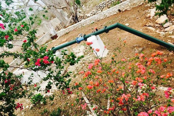Foto de rancho en venta en cacalchén , cacalchen, cacalchén, yucatán, 3628421 No. 03