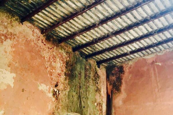 Foto de rancho en venta en cacalchén , cacalchen, cacalchén, yucatán, 3628421 No. 10