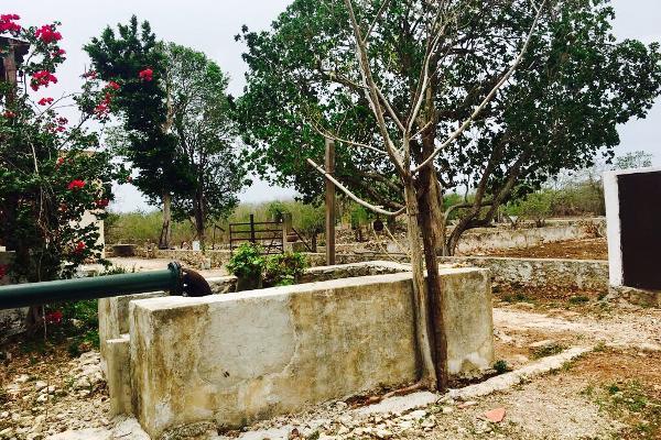 Foto de rancho en venta en cacalchén , cacalchen, cacalchén, yucatán, 3628421 No. 04