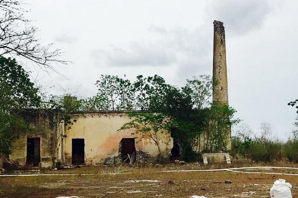 Foto de rancho en venta en cacalchén , cacalchen, cacalchén, yucatán, 3628421 No. 07