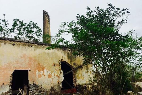 Foto de rancho en venta en cacalchén , cacalchen, cacalchén, yucatán, 3628421 No. 09