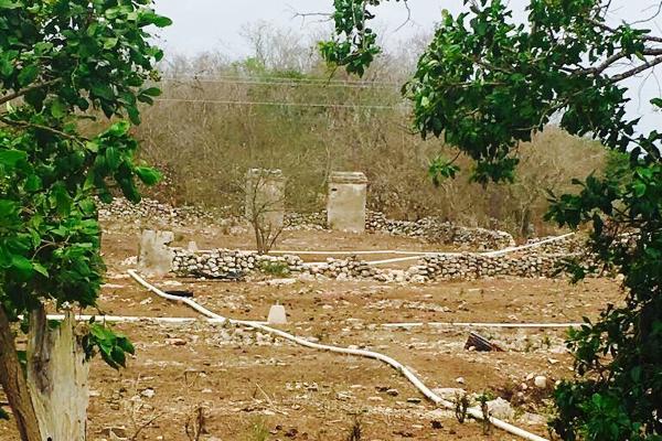 Foto de rancho en venta en cacalchén , cacalchen, cacalchén, yucatán, 3628421 No. 16