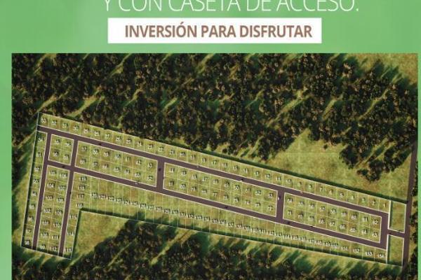 Foto de terreno habitacional en venta en  , cacalchen, cacalchén, yucatán, 5398855 No. 02