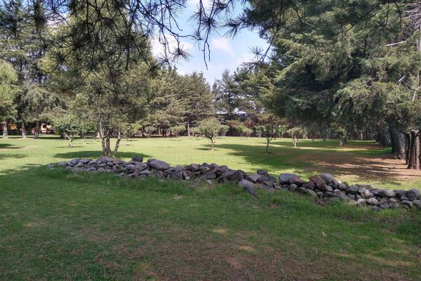 Foto de rancho en venta en  , cacalomacán, toluca, méxico, 8306834 No. 20