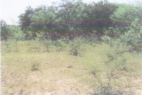 Foto de terreno habitacional en venta en  , cadereyta jimenez centro, cadereyta jiménez, nuevo león, 10648324 No. 03