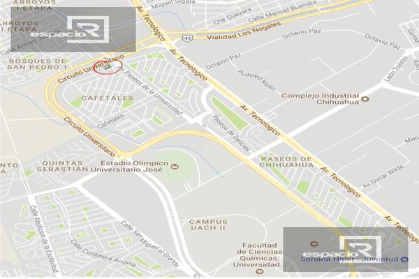 Foto de local en venta en  , cafetales, chihuahua, chihuahua, 11834624 No. 05