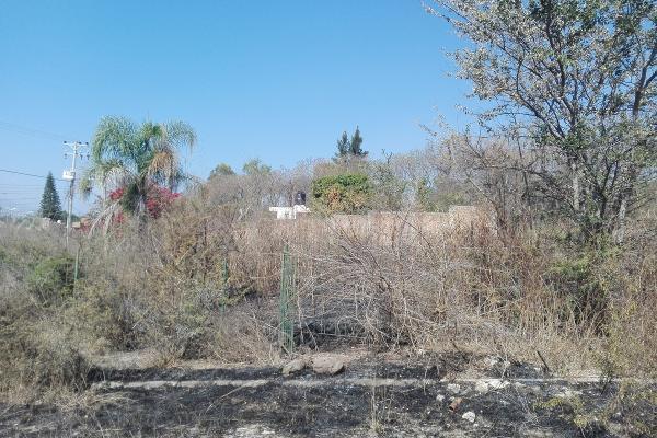 Foto de terreno habitacional en venta en  , cajititlán, tlajomulco de zúñiga, jalisco, 5345132 No. 03