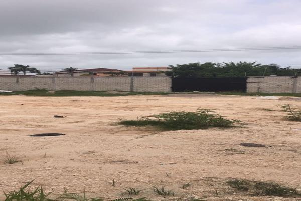 Foto de terreno habitacional en venta en  , caleta, carmen, campeche, 14036831 No. 09
