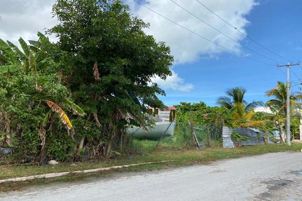 Foto de terreno habitacional en venta en calle 55 , caleta, carmen, campeche, 16443860 No. 03