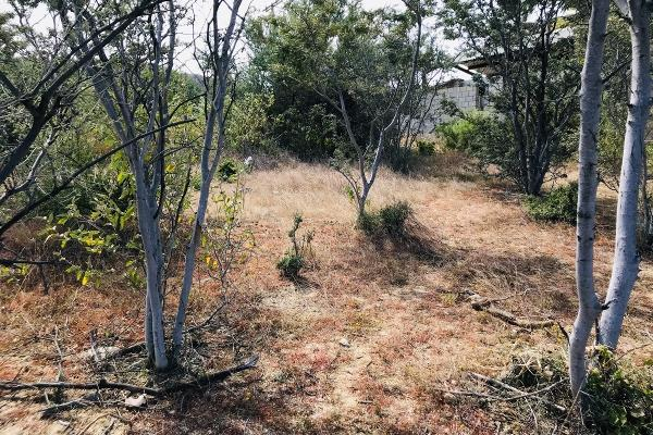 Foto de terreno habitacional en venta en calle daniel trasvina , los barriles, la paz, baja california sur, 12267184 No. 03