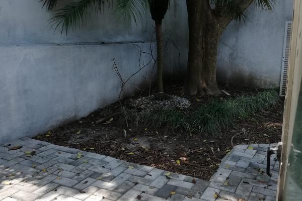 Foto de casa en renta en calle de la luz 169, chapultepec, cuernavaca, morelos, 5891550 No. 06