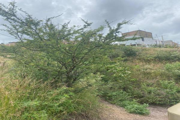 Foto de terreno habitacional en venta en calle de la vía , santa fe, guanajuato, guanajuato, 16896258 No. 06