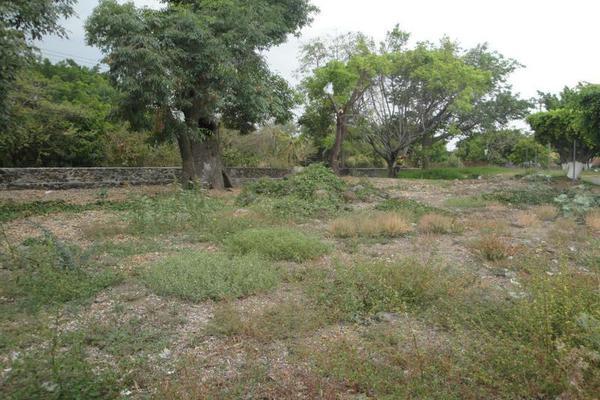 Foto de terreno habitacional en venta en calle de los doctores , lomas de jiutepec, jiutepec, morelos, 17714903 No. 05
