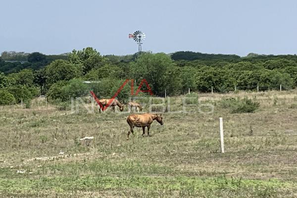 Foto de terreno comercial en venta en calle #, el fraile, 67600 el fraile, nuevo león , el fraile, montemorelos, nuevo león, 11016117 No. 09