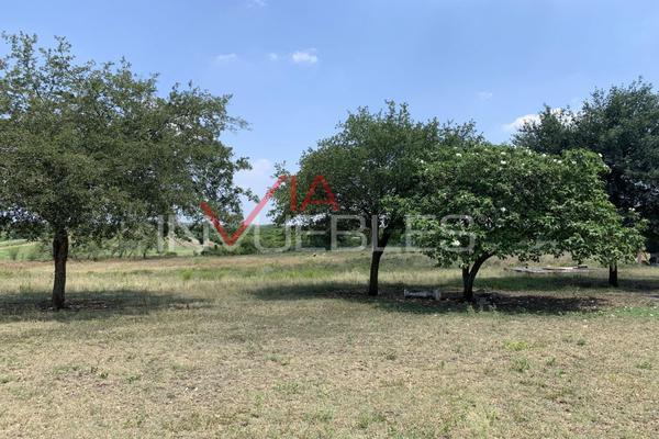 Foto de terreno comercial en venta en calle #, el fraile, 67600 el fraile, nuevo león , el fraile, montemorelos, nuevo león, 11016117 No. 10