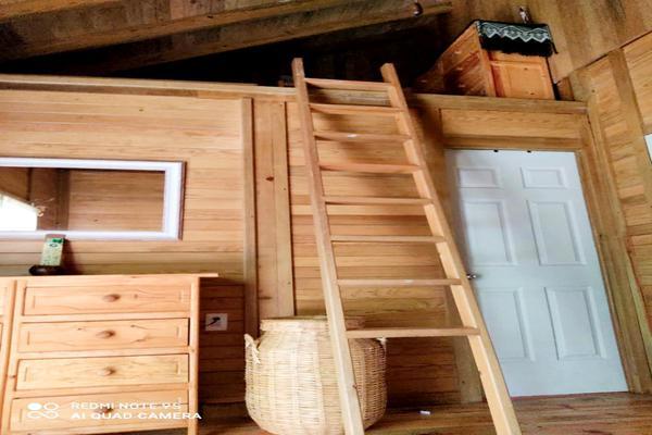 Foto de casa en venta en calle los ciricotes, manzana 0166 , isla de holbox, lázaro cárdenas, quintana roo, 19061086 No. 14