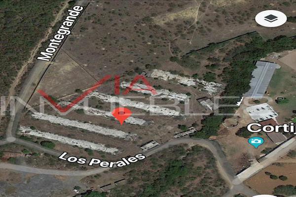 Foto de terreno industrial en venta en calle #, los rodriguez, 67300 los rodriguez, nuevo león , los rodriguez, santiago, nuevo león, 7097171 No. 02