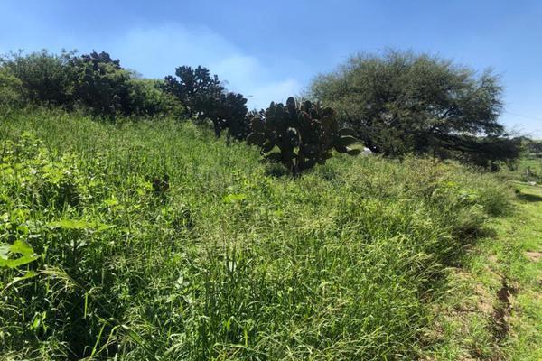 Foto de terreno habitacional en venta en calle rio usumacinta 12, presa escondida, tepeji del río de ocampo, hidalgo, 18697632 No. 05