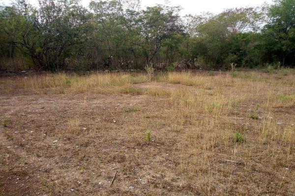 Foto de terreno habitacional en venta en calle sin nombre 0, san roque, juárez, nuevo león, 17624115 No. 06