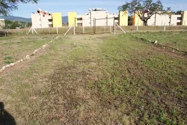 Foto de terreno industrial en venta en calle sin nombre , zavaleta, cuilápam de guerrero, oaxaca, 5953867 No. 04