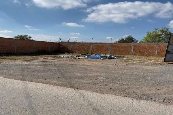 Foto de terreno habitacional en venta en calle sin numero , el palmar 2, mexquitic de carmona, san luis potosí, 15225948 No. 03