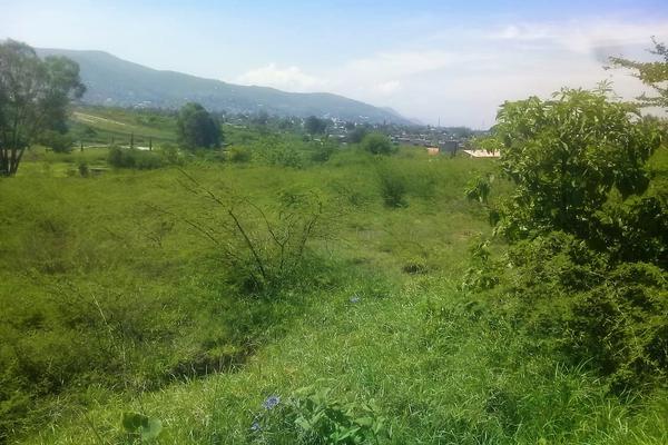 Foto de terreno comercial en venta en calle s/n , san sebastián de las flores, san pablo etla, oaxaca, 7529727 No. 04