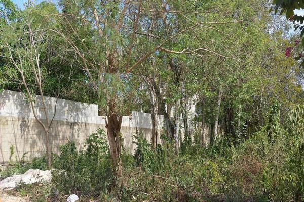 Foto de terreno habitacional en venta en calle zapote s/n lote 006 manzana 14 por avenida susano aguilar y avenida fundadores. , el tigrillo, solidaridad, quintana roo, 7143236 No. 01