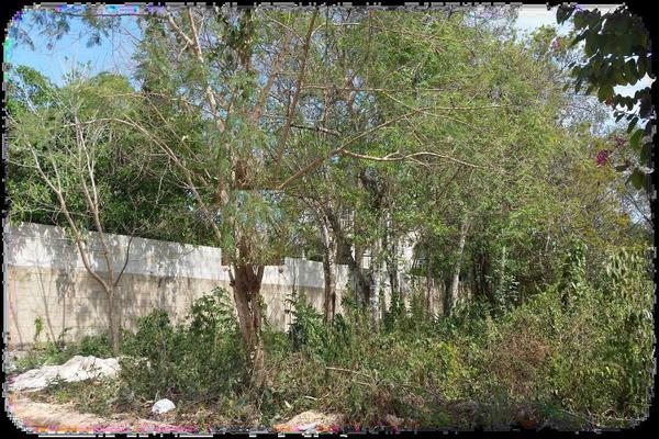 Foto de terreno habitacional en venta en calle zapote s/n lote 006 manzana 14 por avenida susano aguilar y avenida fundadores. , el tigrillo, solidaridad, quintana roo, 7143236 No. 02