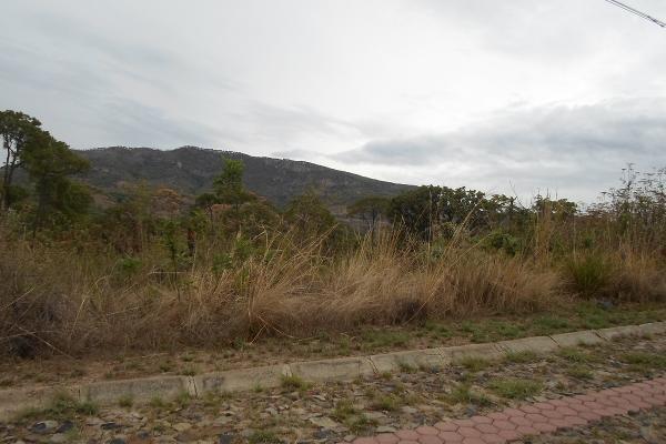 Foto de terreno habitacional en venta en callejón de los pinos , hacienda la herradura, zapopan, jalisco, 3511291 No. 06
