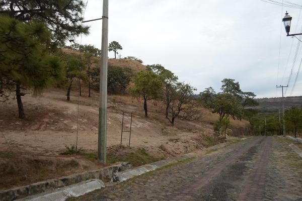 Foto de terreno habitacional en venta en callejón de los pinos , hacienda la herradura, zapopan, jalisco, 3511291 No. 11