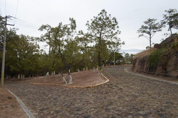 Foto de terreno habitacional en venta en callejón del nogal , hacienda la herradura, zapopan, jalisco, 3504762 No. 20