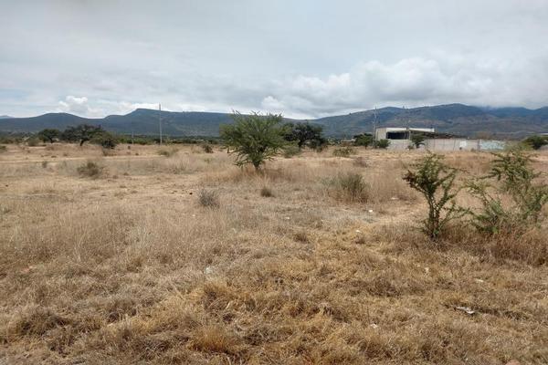 Foto de terreno comercial en venta en callejon san teodoro, rancho alcocer 7, los adobes, san miguel de allende, guanajuato, 7469617 No. 13
