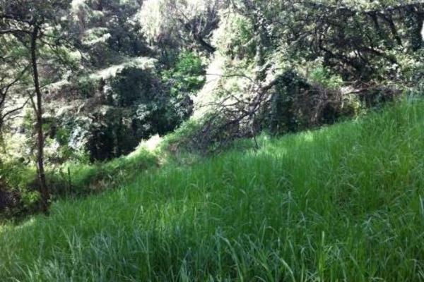 Foto de terreno habitacional en venta en calzada desierto de los leones , lomas de los cedros, álvaro obregón, df / cdmx, 6163199 No. 08
