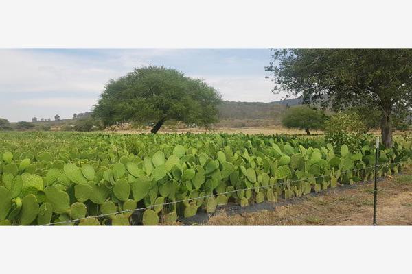 Foto de terreno industrial en renta en camino a fuentezuelas 1, las fuentes, san juan del río, querétaro, 14888154 No. 04